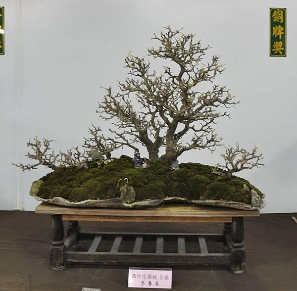 2015台灣花菓盆栽展0061.jpg