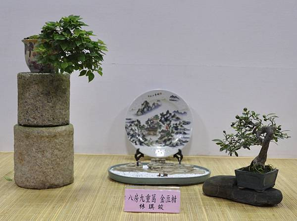 2015台灣花菓盆栽展0097.jpg