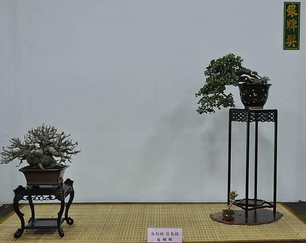 2015台灣花菓盆栽展0137.jpg