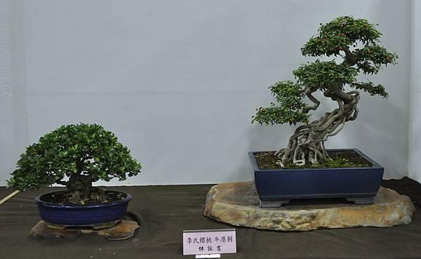 2015台灣花菓盆栽展0148.jpg