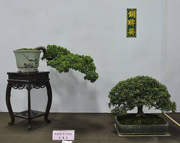 2015台灣花菓盆栽展0169.jpg