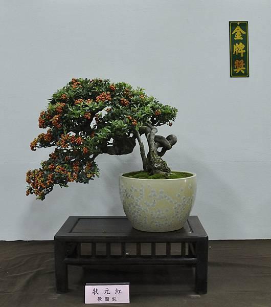 2015台灣花菓盆栽展0176.jpg