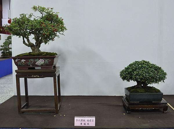 2015台灣花菓盆栽展0186.jpg