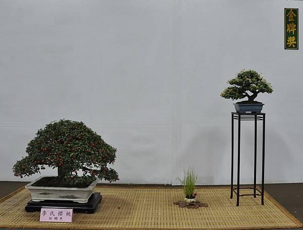 2015台灣花菓盆栽展0202.jpg