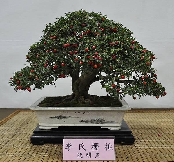 2015台灣花菓盆栽展0206.jpg