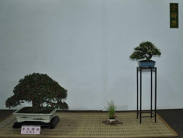 2015台灣花菓盆栽展0325.jpg