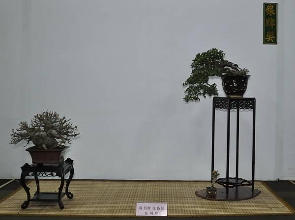 2015台灣花菓盆栽展0332.jpg