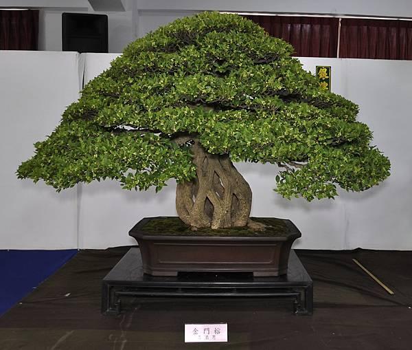 2015台灣花菓盆栽展0422.jpg