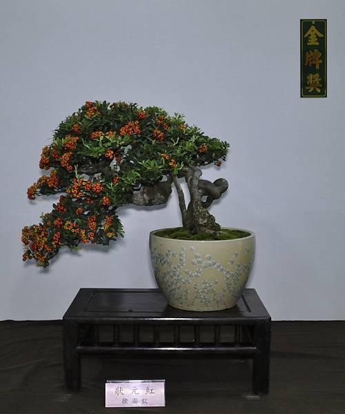 2015台灣花菓盆栽展0439.jpg