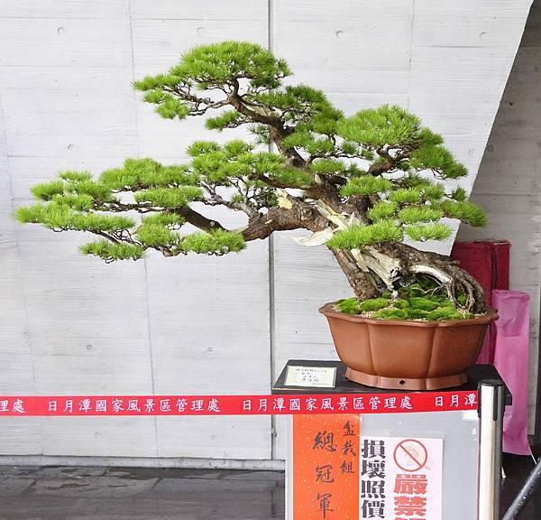 2015明潭松韻樹石大展0003.jpg
