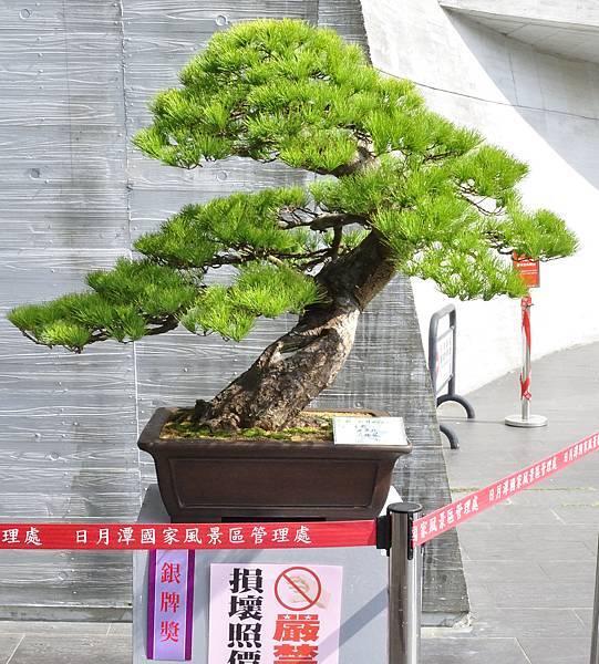 2015明潭松韻樹石大展0041.jpg