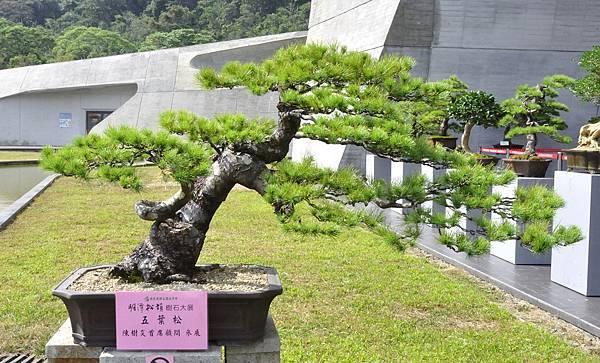 2015明潭松韻樹石大展0069.jpg