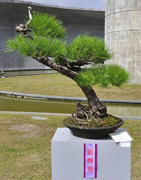 2015明潭松韻樹石大展0087.jpg