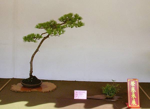 2016華松展_00373.jpg