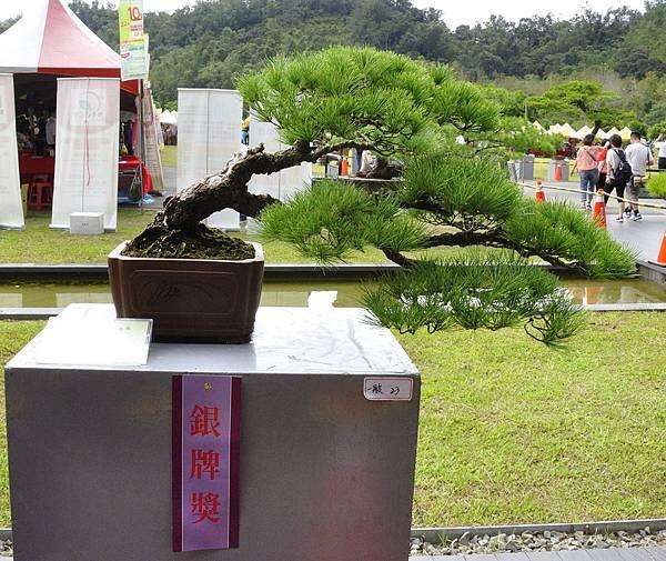 2016明潭松韻樹石大展_00046.jpg