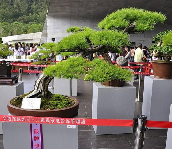 2016明潭松韻樹石大展_00140.jpg