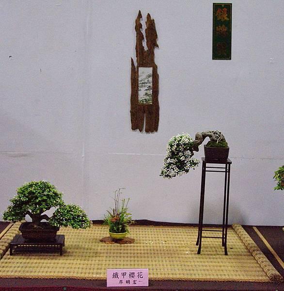 2016台灣花菓盆栽展_00134.jpg