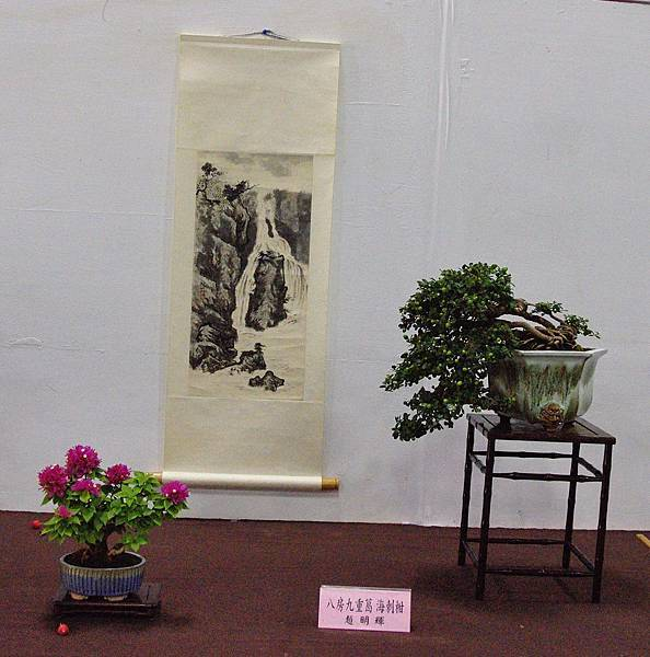 2016台灣花菓盆栽展_00151.jpg