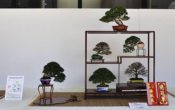 2016台中樹石展_00002.jpg