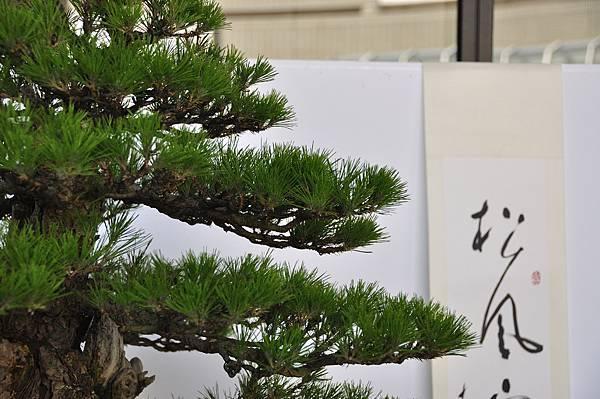 2016台中樹石展_00076.jpg