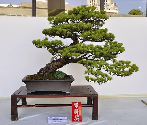 2016台中樹石展_00105.jpg