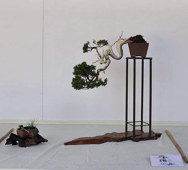 2016台中樹石展_00140.jpg