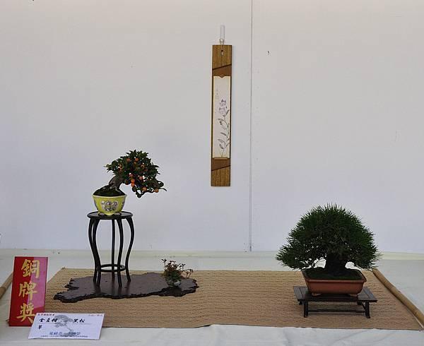 2016台中樹石展_00142.jpg