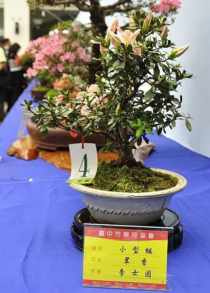 2017台中皋月展_00042.jpg