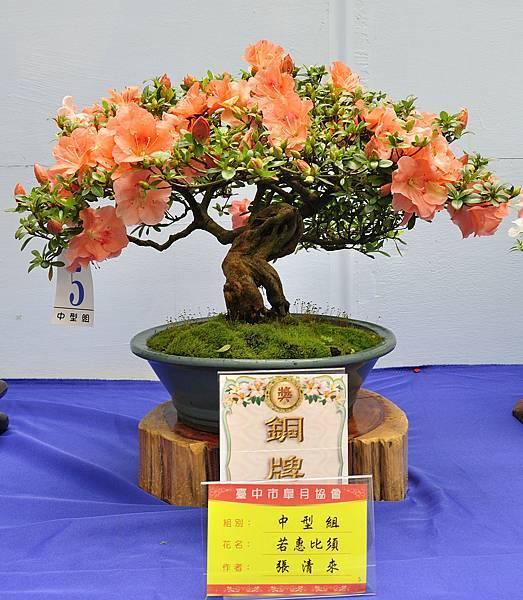2017台中皋月展_00064.jpg