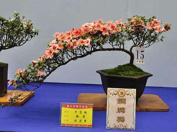 2017台中皋月展_00074.jpg
