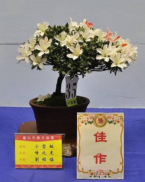 2017台中皋月展_00096.jpg