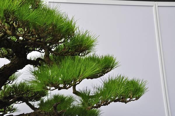 2017明潭松韻大展_00120.jpg
