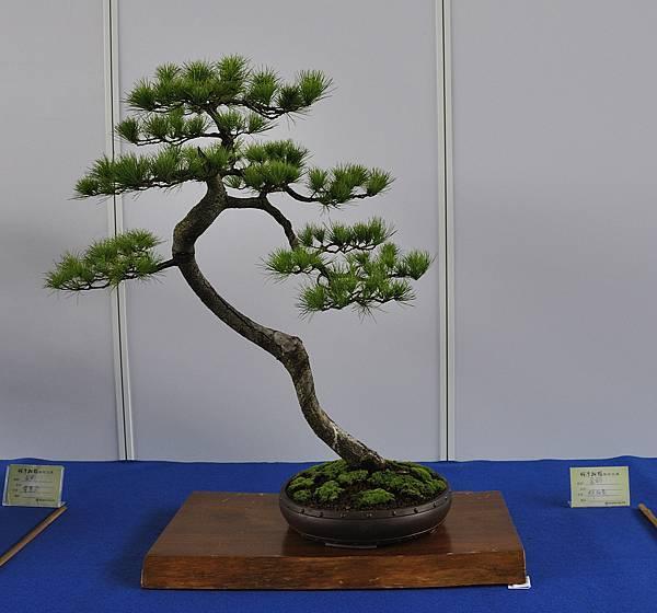 2017明潭松韻大展_00305.jpg