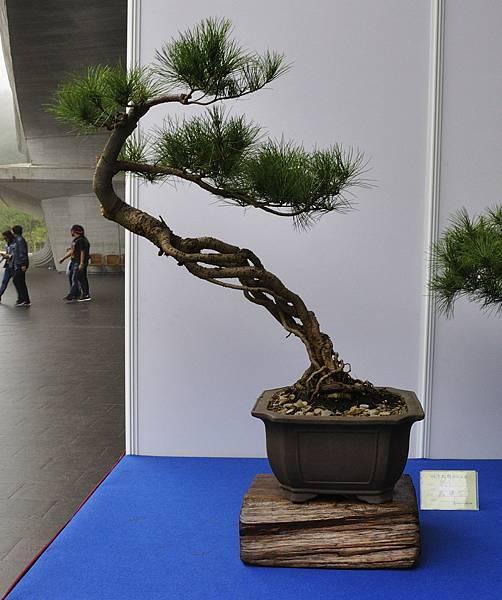 2017明潭松韻大展_00311.jpg
