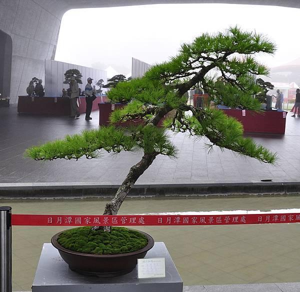2017明潭松韻大展_00419.jpg