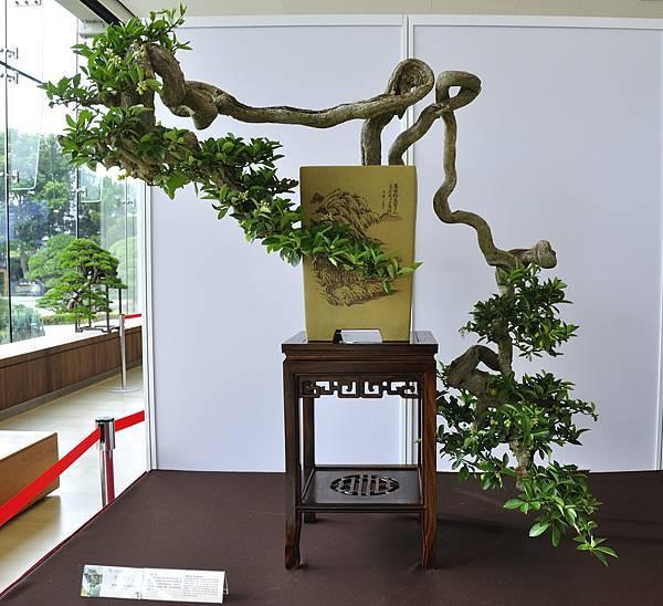 2017成美園_00092.jpg
