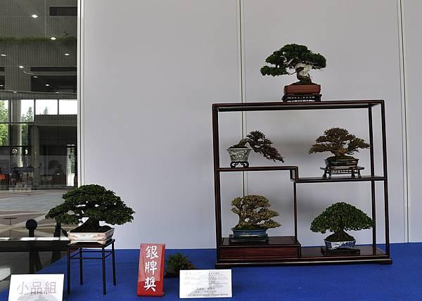 2017台中樹石展_00003.jpg