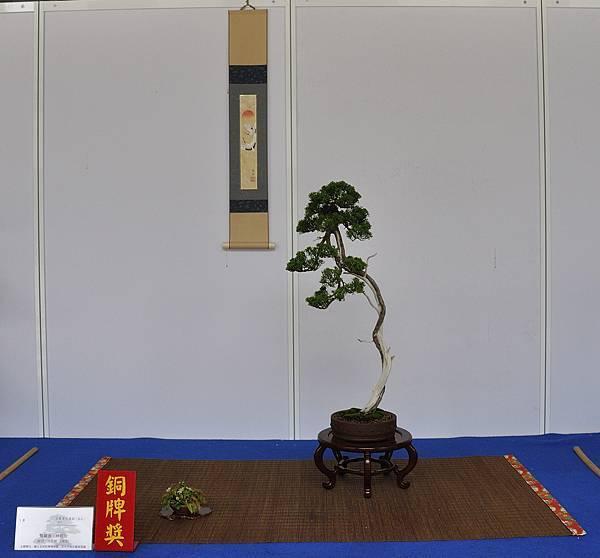 2017台中樹石展_00012.jpg