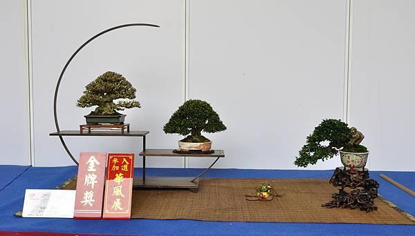 2017台中樹石展_00018.jpg