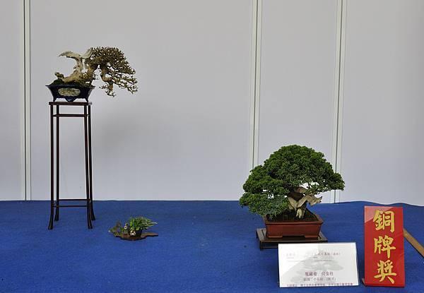 2017台中樹石展_00026.jpg