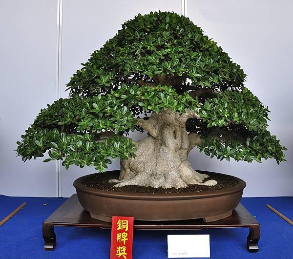 2017台中樹石展_00060.jpg