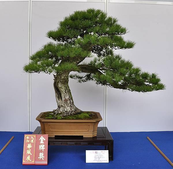 2017台中樹石展_00092.jpg