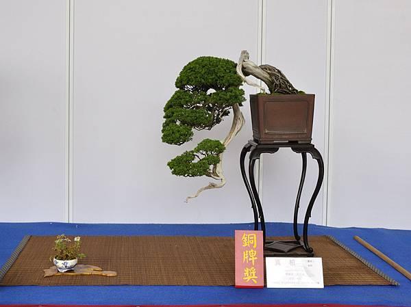 2017台中樹石展_00166.jpg