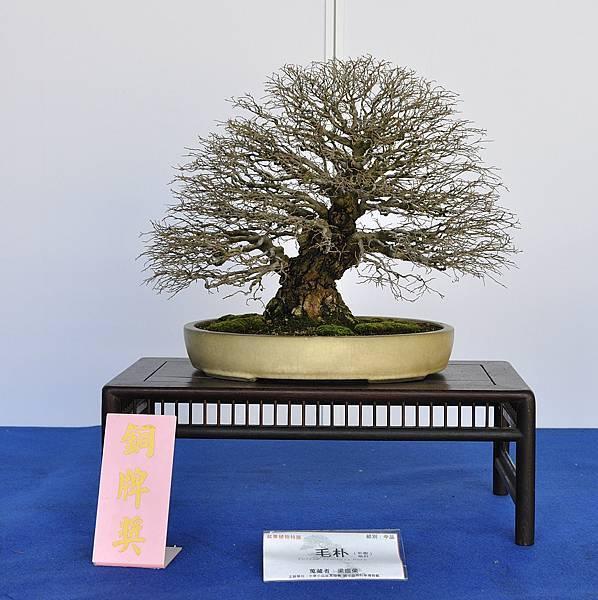 2017雅風展_00023.jpg