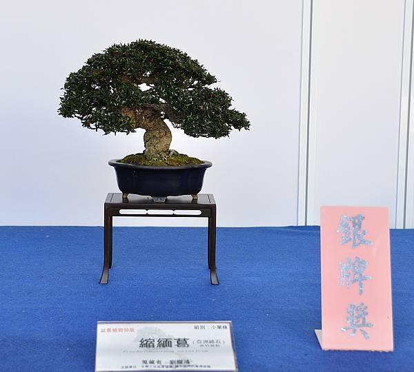 2017雅風展_00025.jpg