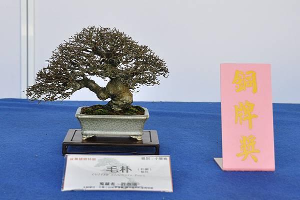 2017雅風展_00033.jpg