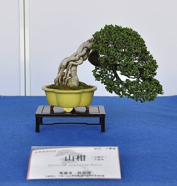 2017雅風展_00035.jpg
