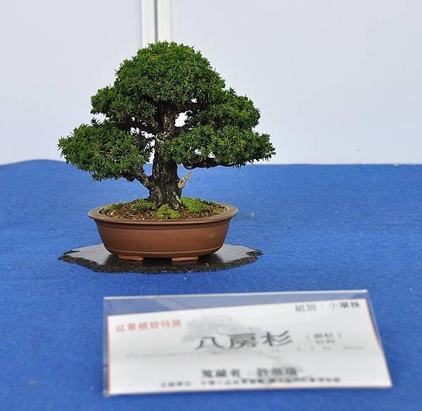 2017雅風展_00037.jpg