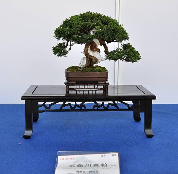 2017雅風展_00040.jpg