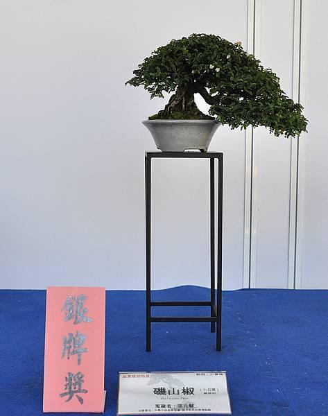 2017雅風展_00041.jpg
